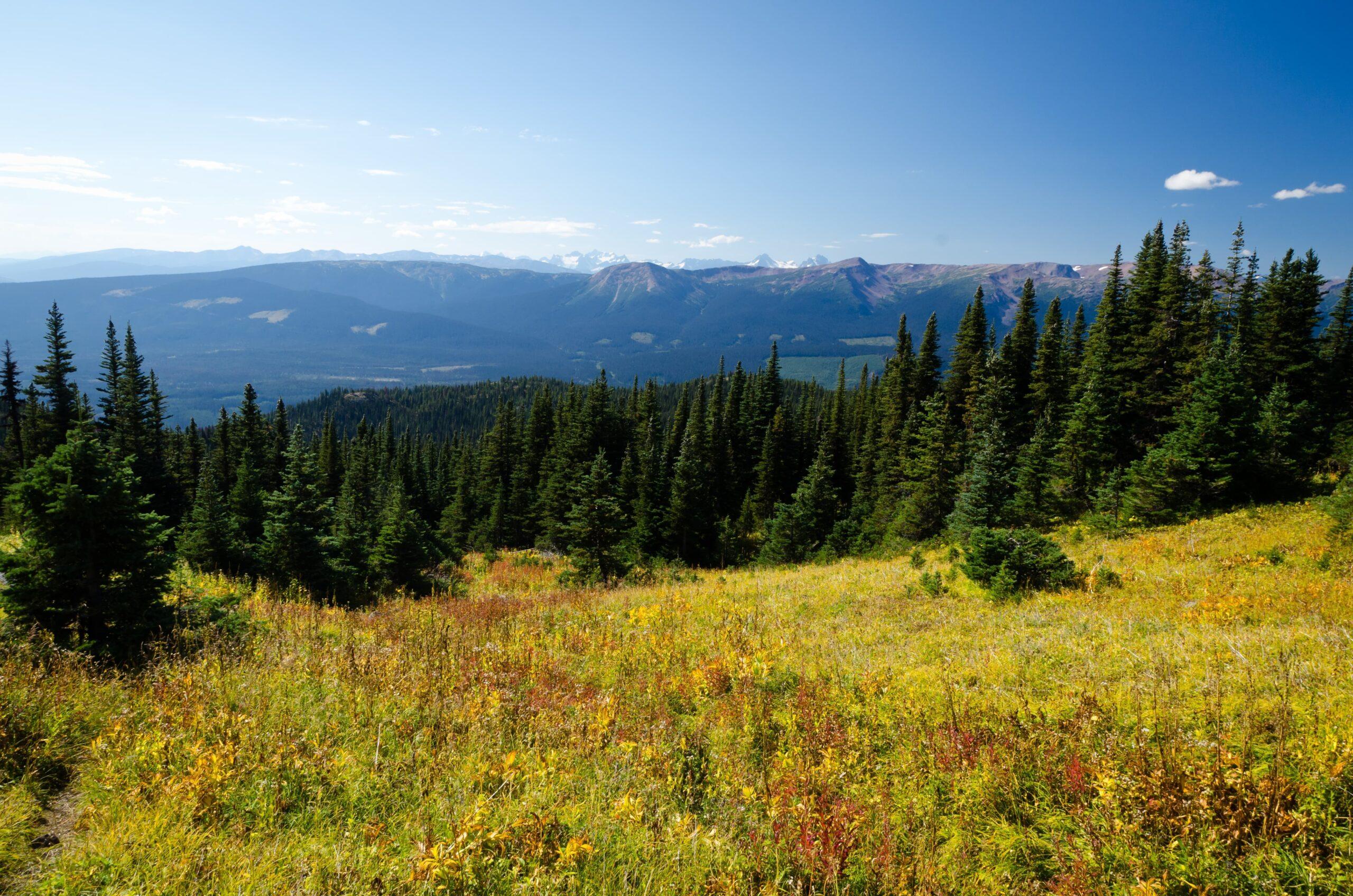 Hudson Bay Mountain, Canada